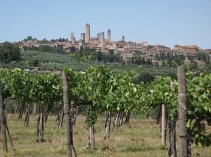 384_san_gimignano_vineyard_towers