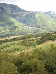 392_tuscany_n_green_valley