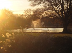 2009120558_memory_hill_fountain_sunset