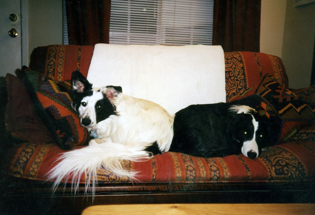 19980600_mazzy_jake_couch